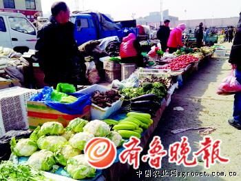 """重庆市菜地从主城""""挪窝""""到远郊"""