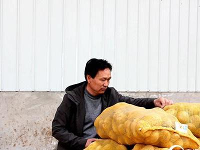 南瓜秧上结出高产黄瓜(图)