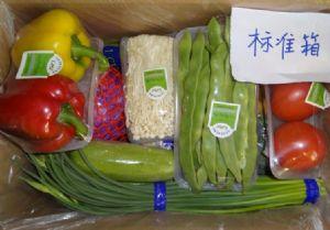 yabo80元旦春节礼品菜