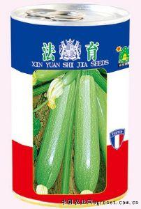 供应法育——西葫芦种子