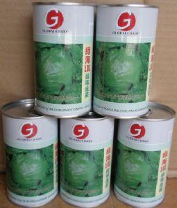 供应绿海101(西生菜)