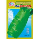 供应精品嘉丰三青皮--莴苣种子