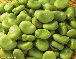 求购豌豆 蚕豆 大豆等