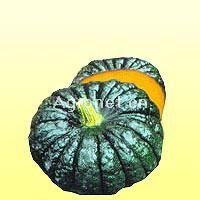 供应甜面王—南瓜种子