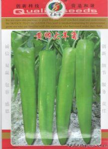 供应黄帅大羊角F1—辣椒种子
