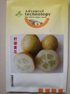 供应柠檬黄瓜
