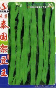 供应泰国架豆王—豇豆种子
