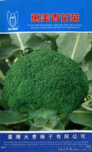 供应惠美—青花菜种子