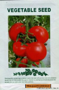 yabo80奥格迪—番茄种子