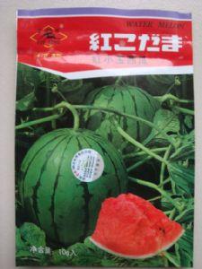 供应红小玉西瓜—西瓜种子