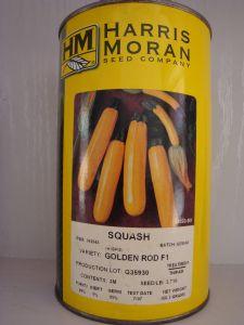 供应原装进口金皮香蕉—西葫芦种子