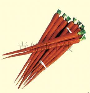 供应可乐2号—胡萝卜种子