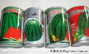 供应优质西瓜种子—西瓜种子