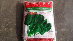 供应益农菠菜种子