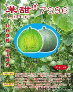 供应莱甜7696—甜瓜种子