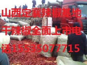 yabo80北京红干红辣椒