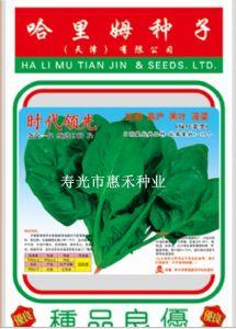 供应时代领先—菠菜种子