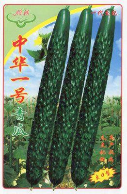 广东广州白云_供应中华1号青瓜―黄瓜种子
