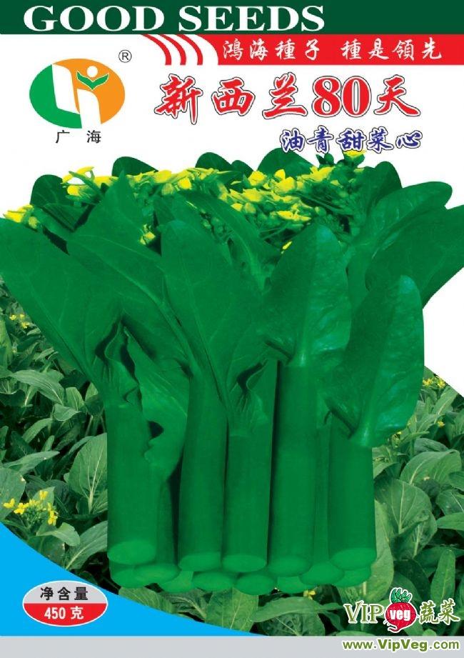 广东广州白云_供应新西兰80天菜心-叶菜种子图片