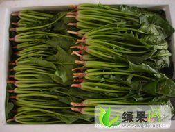 yabo80菠菜