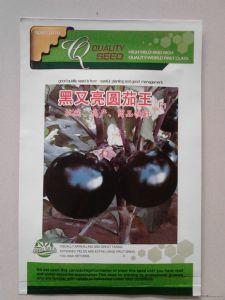 供应茄王种子