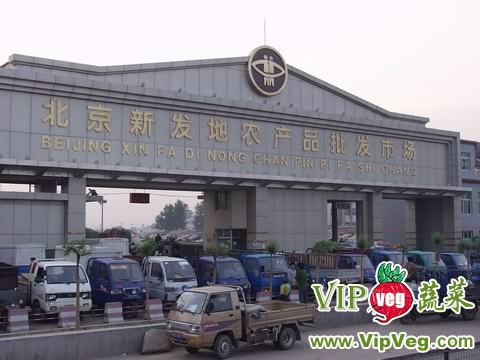 北京新发地批发市场