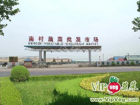 山东青岛平度南村蔬菜批发市场