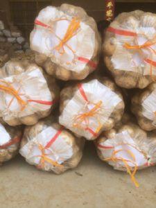 重庆双福专业代销全国各地土豆